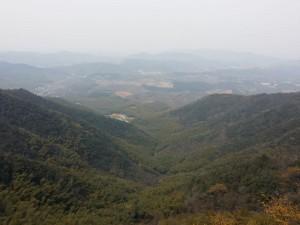 Bambus-Berge